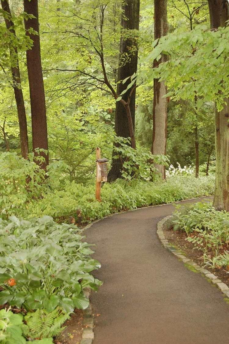 1024px-Chanticleer_Gardens_Asian_Woods_2000px.jpg