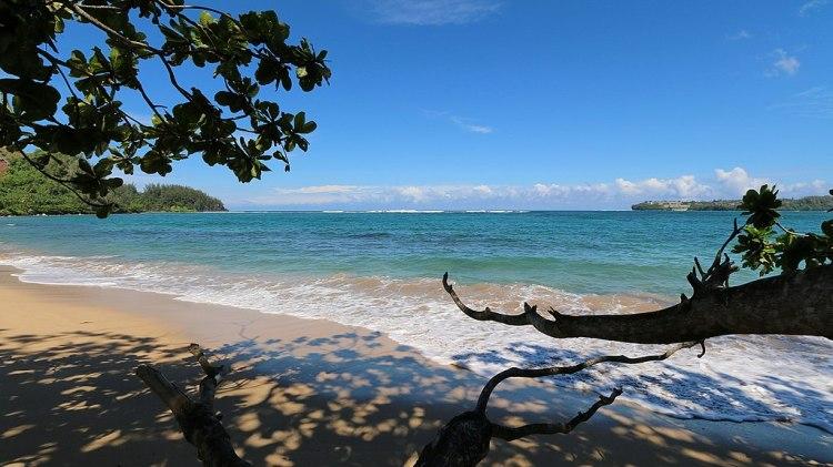 1024px-Hanalei_Bay_Beach,_Hanalei_-_panoramio_(1)