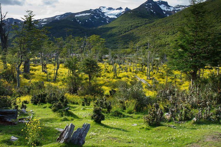1024px-Paso_de_la_Oveja,_Tierra_del_Fuego_National_Park