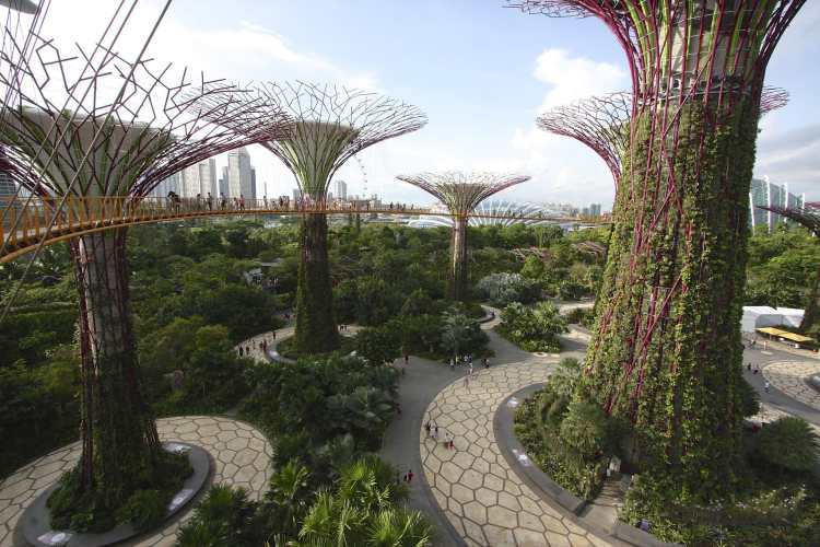 1920px-OCBC_Skyway,_Gardens_By_The_Bay,_Singapore_-_20140809