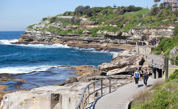 Bondi-coastal-walk.jpg