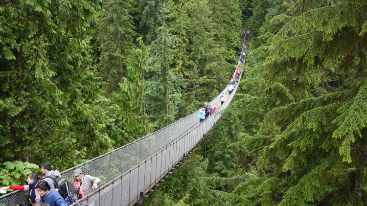Capilano_Suspension_Bridge,_Vancouver,_Canada_(July_2016)_1