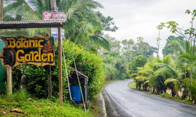 Caribbean_Panama_Network_Botanical_Garden01-627x376
