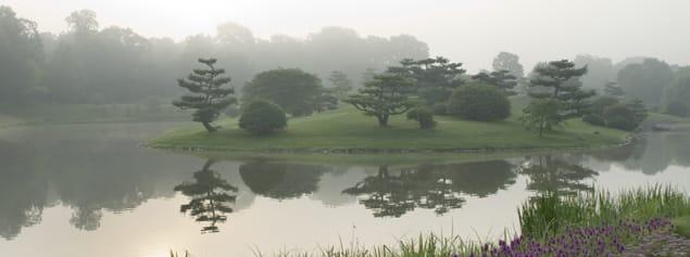 CBG_japanese_island.jpg