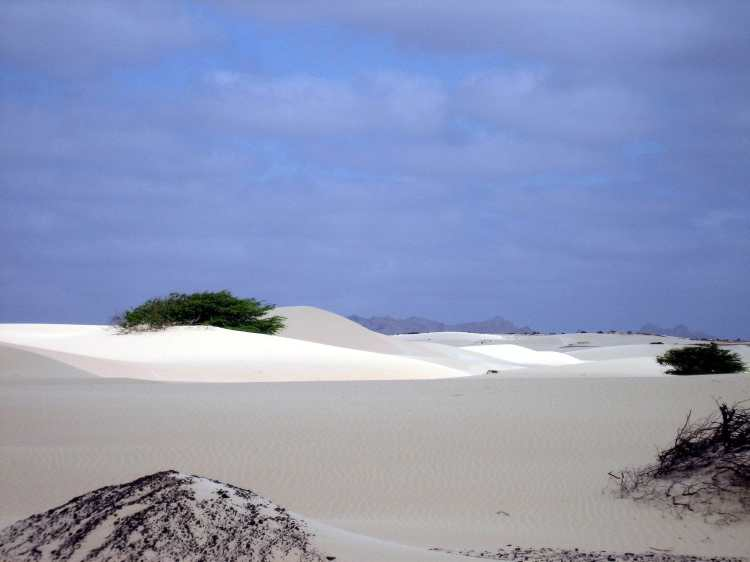 Deserto_Viana,_Boa_Vista.jpg