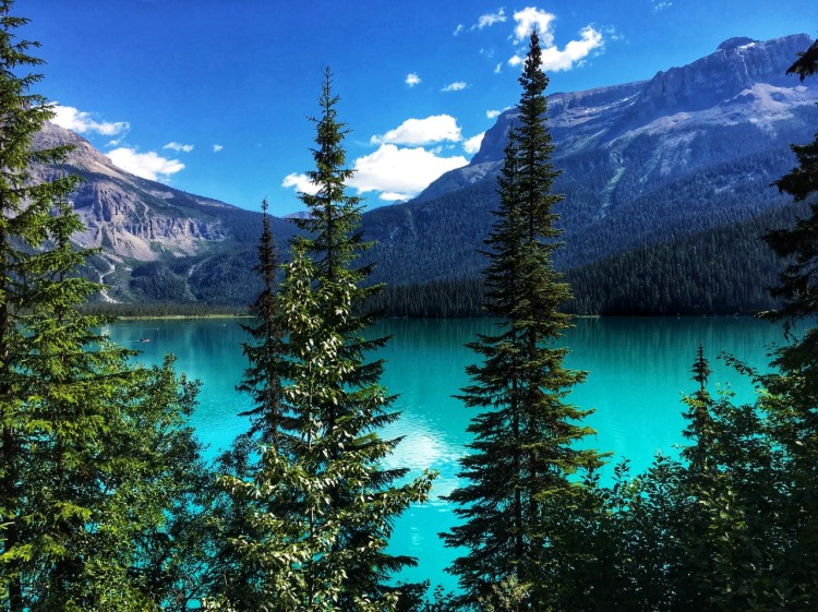 Emerald_Lake_-_Yoho_National_Park,_BC,_Canada