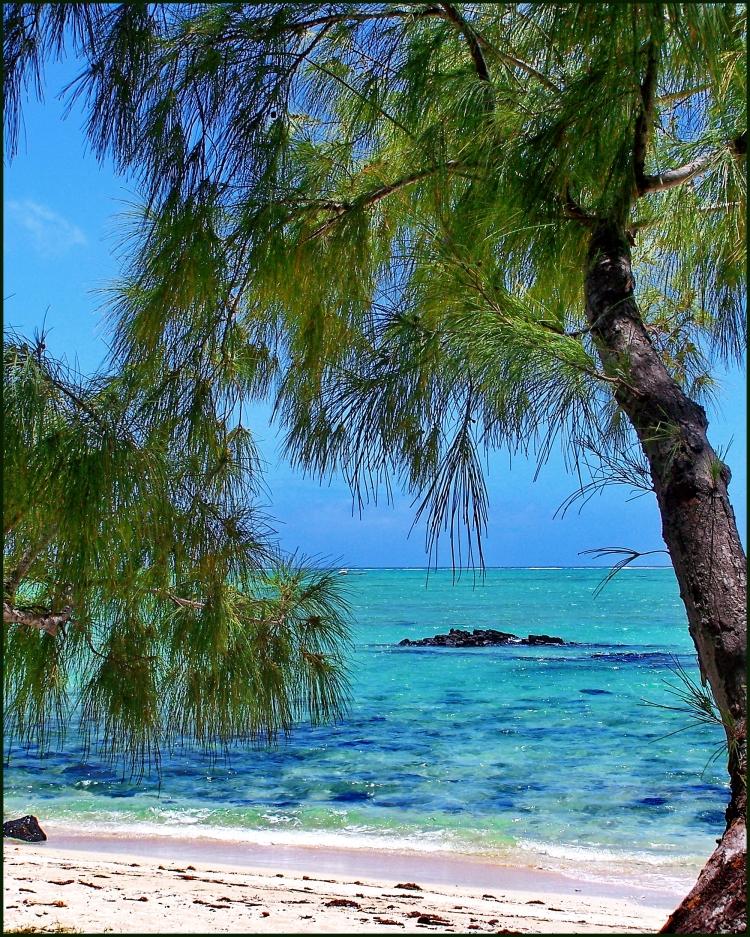 Île_aux_Cerfs_-_Mauritius_-_panoramio