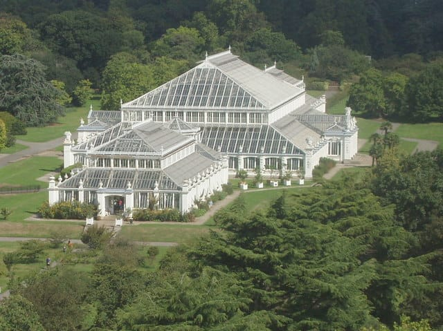 Kew_Gardens_Temperate_House_from_the_Pagoda_-_geograph.org.uk_-_227173.jpg