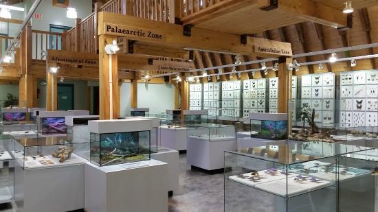 newfoundland-insectarium.jpg