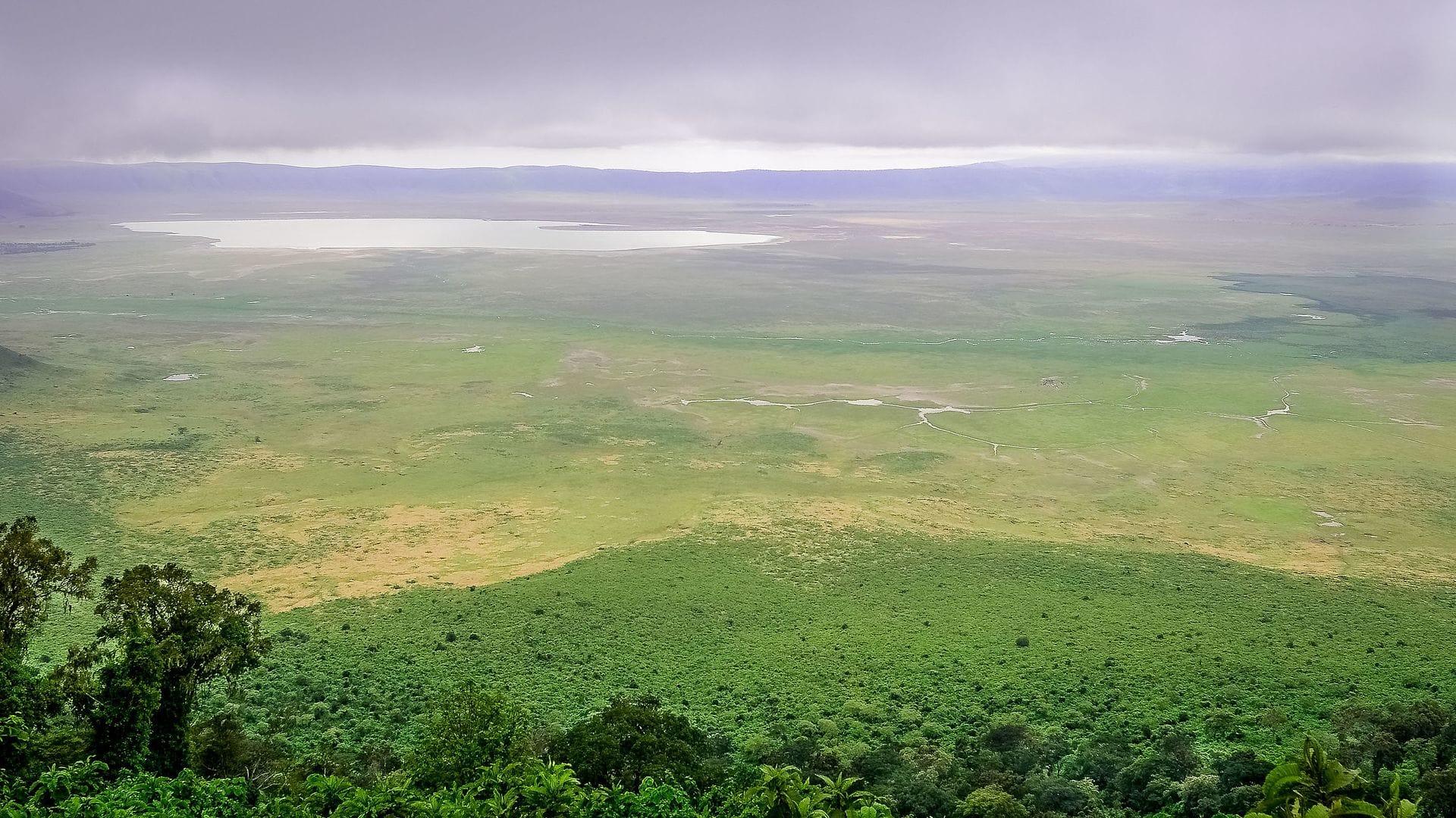 Ngorongoro-1001-2