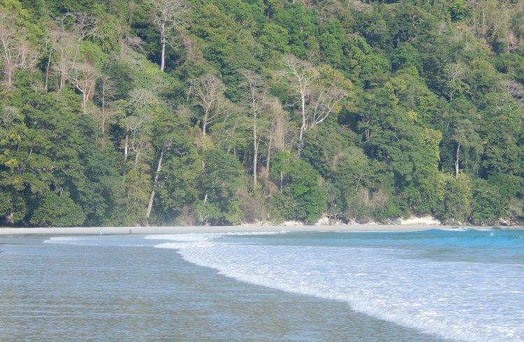 Radhanagar_Beach,_Havelock_Island,_Andaman,_India