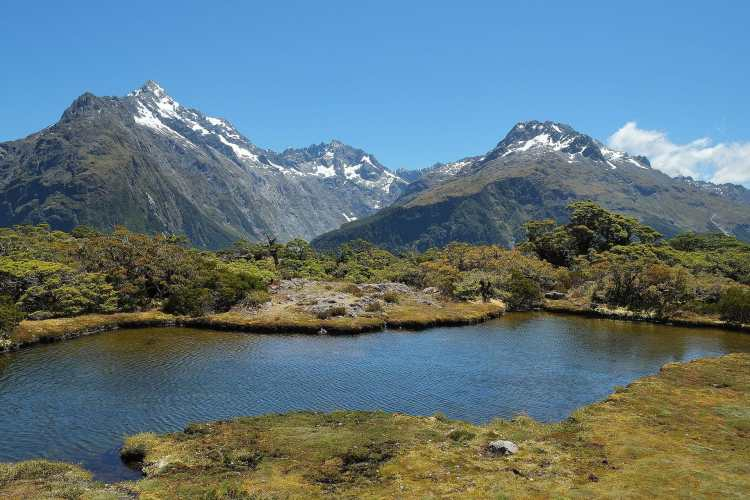 Tarn_at_Key_Summit,_a_side_track_on_the_Routeburn_Track.jpg