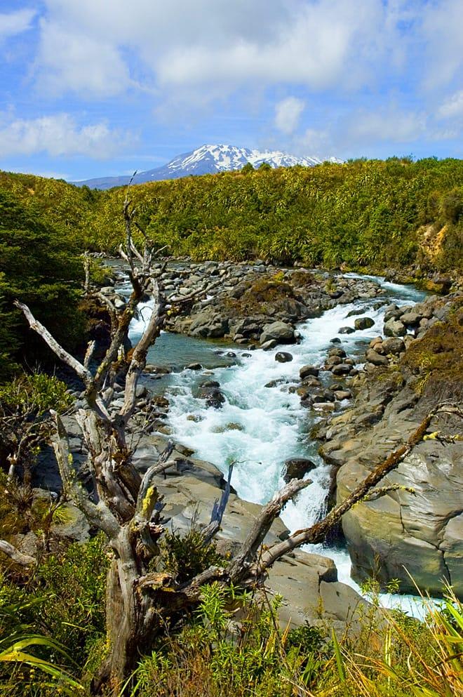 Tongariro_Mahuia_River_n.jpg