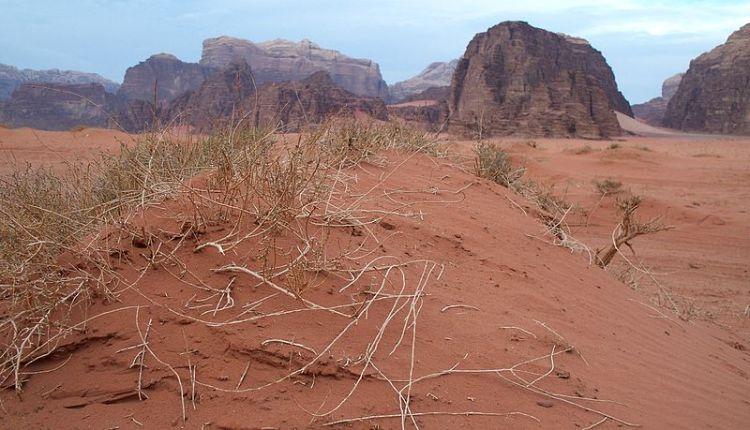 800px-Wadi_Rum_in_Jordan