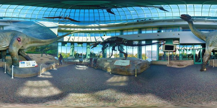 Display_of_dinosaurs_at_the_North_Carolina_Museum_of_Natural_Sciences,_Raleigh_(360_panoramic_view)